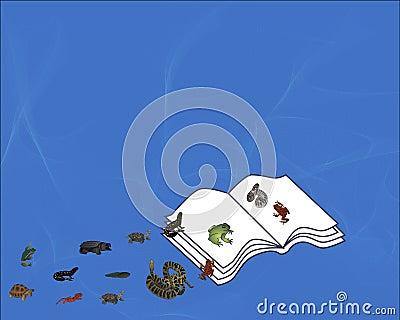 Book of Reptiles & Amphibians