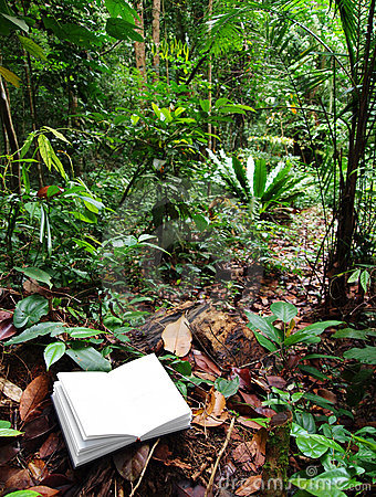 Book in tropical rainforest background