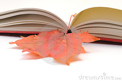 Book wih autumn leaves