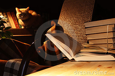 Books And Cat Stock Photo - Image: 4451770