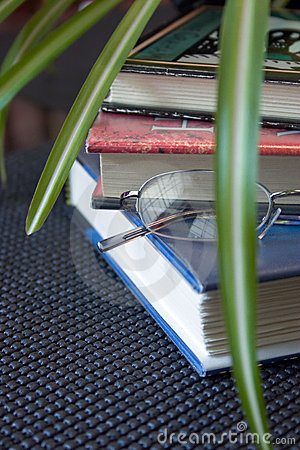 Books. Glasses and Green Plant
