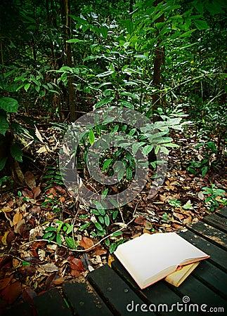 Books on rainforest trail