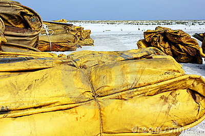Boom on white sand beach for oil cleanup Editorial Image