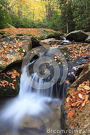 Di boone fork creek, nord carolina occidentale, con le foglie di