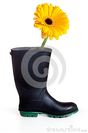 Boot with daisy