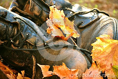 Boots covered in autumn leaves