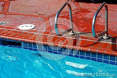 Borda e telha da piscina do tijolo