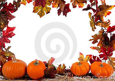 Border of Assorted sizes of pumpkins on hay
