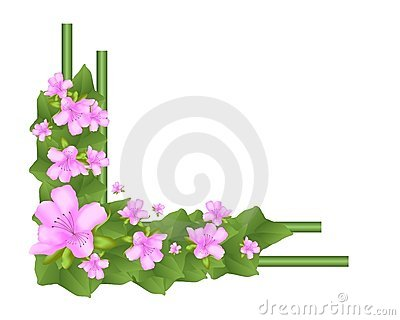 Border with azaleas and ivy leaves, cdr vector