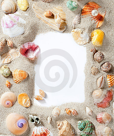 Free Border Frame Summer Beach Shell Blank Copy Space Stock Photography - 20671372