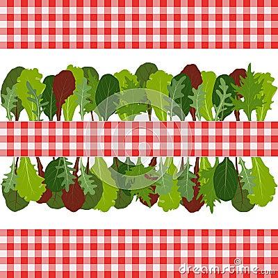Border of salad leaves