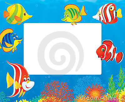 Border of tropical fishes