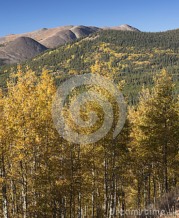 Free Boreas Mountain Is 13,082 Feet In Pike Natioanal Forest Royalty Free Stock Image - 72370026