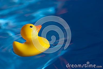 Borracha Ducky