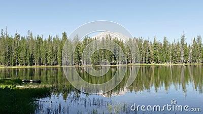 Bos en Bergpiek bij het Vulkanische Nationale Park van Lassen stock video