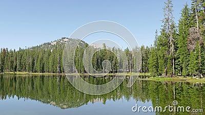 Bos en Bergpiek bij het Vulkanische Nationale Park van Lassen stock videobeelden