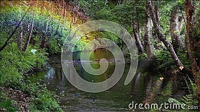 Bosque y arroyuelo encantados