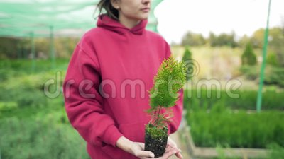 Botânica Jovem cientista segurando um bandido verde nas mãos Amor pela natureza e pelo ambiente video estoque