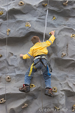 Bot Climbing Rock Wall