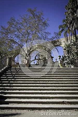Botanic Garden in Coimbra