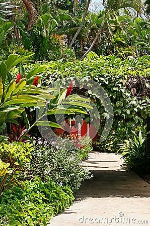 Free Botanical Garden Royalty Free Stock Photo - 22656835