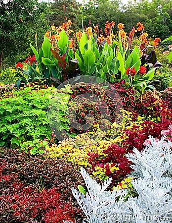 Free Botanical Gardens Stock Photos - 8010523