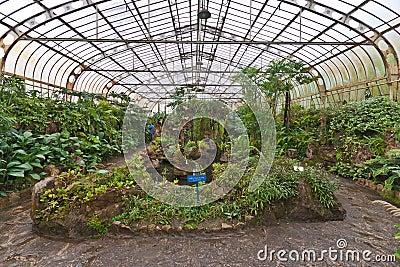 Botanical Gardens Greenhouse Sao Paulo Brazil