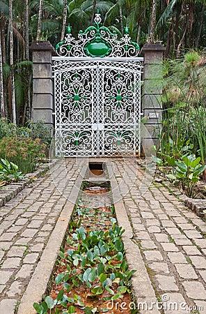 Botanical Gardens Sao Paulo