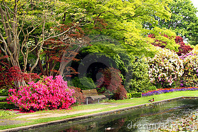 Botanical park