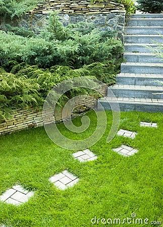 Botanisk trädgård