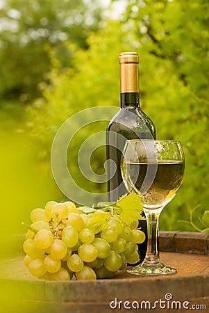Botella de vino con la copa y las uvas en viñedo