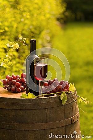 Botella de vino rojo, copa y uvas en viñedo