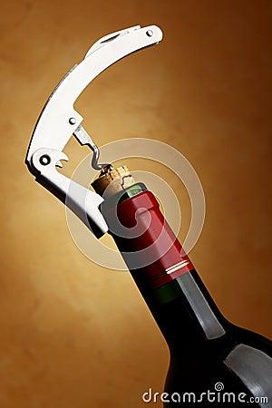 Bottle with cork-screw