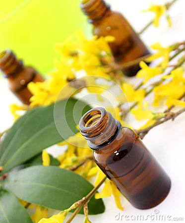 Free Bottle Of Essential Oil And Flowers On White Royalty Free Stock Photo - 39144105