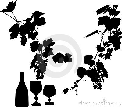 Bottle, vine and glass