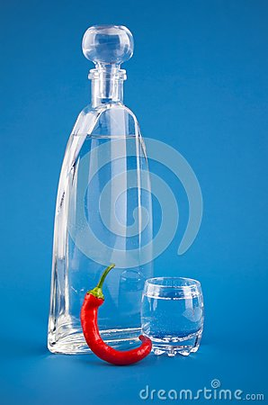 Bottle vodka with hot chili pepper