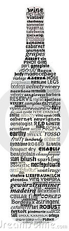 Bottle of Wine Names and Terms
