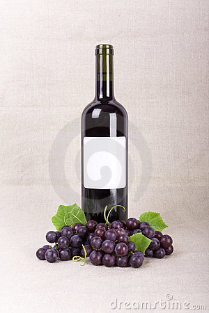 Bottle of wine and grapes on linen canvas