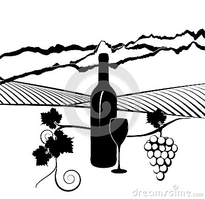 Bottle of wine and vineyard