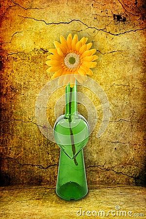 Free Bottle With Flower On Grunge Background Royalty Free Stock Photo - 18062755