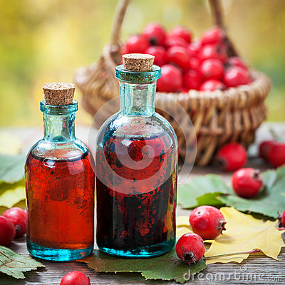 Free Bottles Of Hawthorn Berries Tincture And Red Thorn Apples Stock Images - 61319124