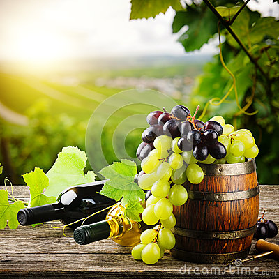 Free Bottles Of Red And White Wine With Fresh Grape Royalty Free Stock Images - 34119319