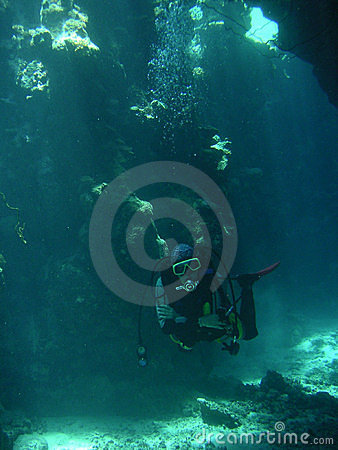 Free Bottom Of The Sea Royalty Free Stock Photography - 398087