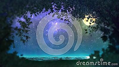 Boucle de forêt de nuit