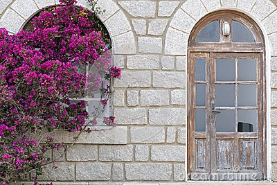 Bougainvillea on damaged house