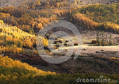 Boulder Mt, Ut - 2016-09-30 Fall Color -01c Free Public Domain Cc0 Image