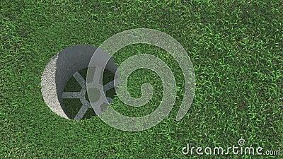 Boule de golf sur l'herbe