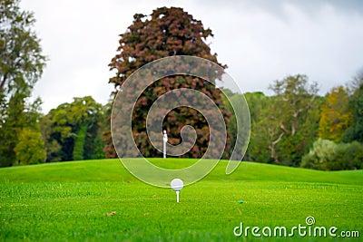 Boule de golf sur la pièce en t