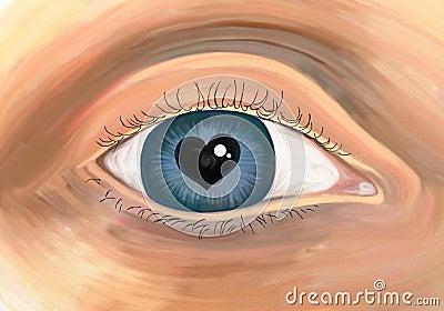 Bountiful eye