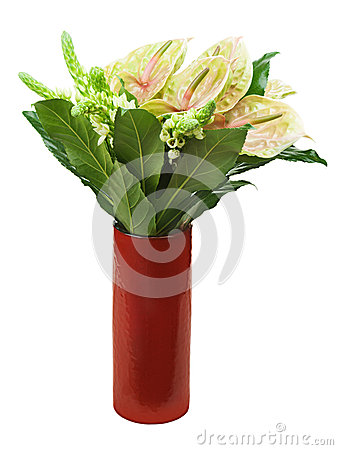 Bouquet from anturiums in red vase isolated on white background.
